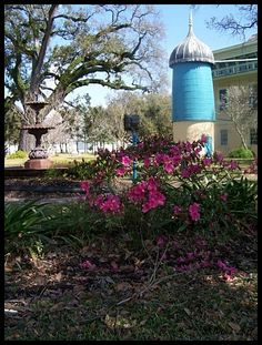San Francisco plantation new New Orleans 2008