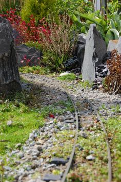 Garden Railway Forum :: Sherwood Oaks Light Railway Do not forget about signs