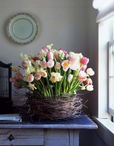 Tulips and two kinds of daffodils--cheerful and pretty.  flowernest