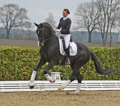 Look at the jump in that canter