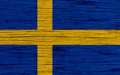International Mother Language Day, Sweden Flag, Game Wallpaper Iphone, Nice Dream, National Symbols, Flags Of The World, Texture, Graphic Design, Painting