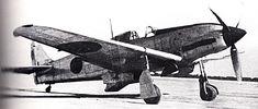 Type3 Hien