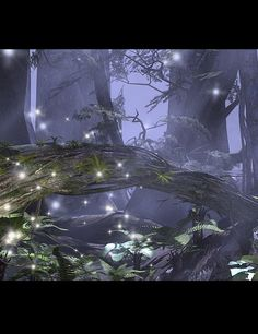 Rays of Dreams for Enchanted Forest | 3D Models and 3D Software by Daz 3D