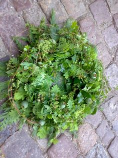 £75 - Lg fern wreath with mixed conifers and  winter foliage