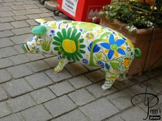 Pigs on Parade