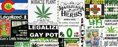 Medical Marijuana is relevant.....Legalize 2012