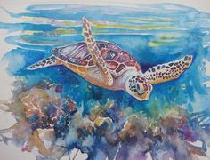 Watercolour painting of a sea turtle swimming above a colourful reef by WatercoloursForSale on Etsy Oil Painting For Sale, Paintings For Sale, Watercolours, Watercolour Painting, Art Tutor, Turtle Swimming, Turtles, Colored Pencils, Art Lessons
