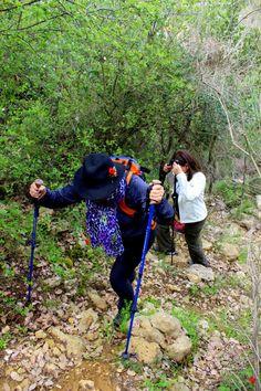 hiking lebanon el barouk