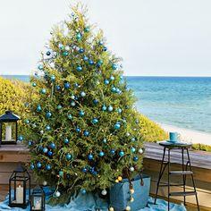 Feeling Blue - Coastal Christmas Trees - Coastal Living