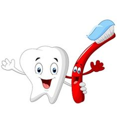 Dental tooth and toothbrush cartoon character vector vector