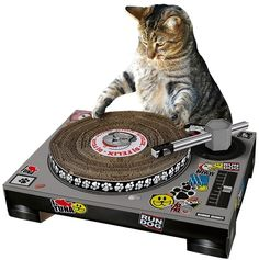 It's a cat scratching post but it'll look like your cat is a hot DJ. SO AWESOME