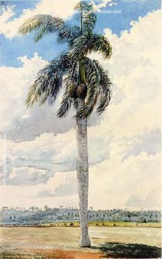 Charles De Wolf Brownell Royal Palm, painting Authorized official website