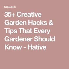 35+ Creative Garden Hacks & Tips That Every Gardener Should Know - Hative