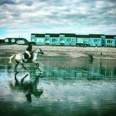 Horse riding on the Bracklesham Beach by Lizzie Reakes