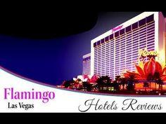 Flamingo Las Vegas Hotel and Casino / Hotels Reviews