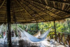 Dormir en un hotel en la selva amazónica en Brasil