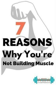 not building muscle
