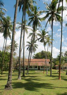 Taru Villas – 906, Hikkaduwa, Sri Lanka – book through i-escape.com  This mellow 2-bedroom bungalow, hugging Hikkaduwa's golden shores, is blissfully unpretentious.
