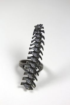 rattlesnake spine ring (unknown source)