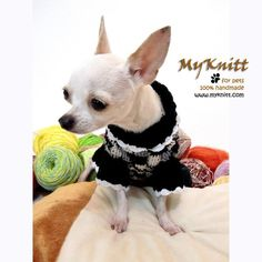 Black, grey and white mixed color knitted dog sweater handmade creation from Myknitt designer dog clothes. Adorable and very comfortable to wear made from cotton yarn material. Unique chihuahua clothes custom made are welcome. Chihuahua Clothes, Cute Chihuahua, Chihuahua Puppies, Pet Puppy, Pet Clothes, Cute Puppies, Animal Clothes, Dog Clothing, Chihuahuas