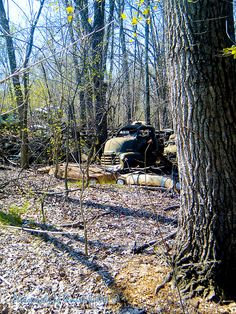 Old Wrecks Submerged in Woods in the Springtime 2, outside of Poplar Bluff, MO.