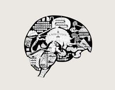 The Architects Brain