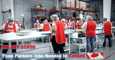 Food Packers Jobs Vacancies In Canada Apply Job, How To Apply, North And South America, Thessaloniki, Job Description, Find A Job, Packers, Canada, Job Offers