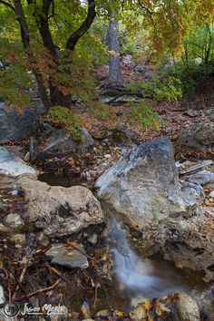 Waterfall below Smith Spring, Guadalupe Mountains National Park, Culberson County, Texas