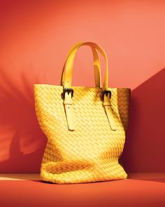 THE VIVIDS: bon voyage with Bottega Veneta!