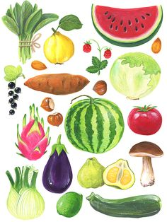 Fruit and vegetables on an abc poster Vegetable Illustration, Fruit Illustration, Food Illustrations, Watercolor Illustration, Watercolor Paintings, Vegetable Drawing, Vegetable Painting, Fruits Drawing, Food Drawing