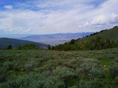 Looking down on Ephraim, Utah