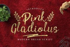 Pink Gladiolus by madeDeduk on @creativemarket