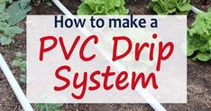 A PVC Drip Irrigation system to water your garden is a great way to go! Easy to assemble and water wise, these systems make watering your garden a breeze! Raised Garden Beds Irrigation, Garden Irrigation System, Garden Compost, Aquaponics System, Vegetable Garden, Gardening Vegetables, Herb Garden, Garden Watering System, Quick Garden