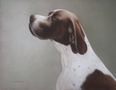 ENGLISH POINTER by Mark Whittaker on ARTwanted