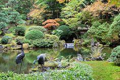 Garden Pond. Portland, Oregon, Japanese Garden ...