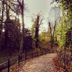 the park #rostock #city #park #path #nature #germany | Tumblr