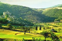 Villa Capanne is another one of our favourite villas where we hold our Painting Holidays in Italy
