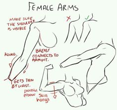 Female Arms