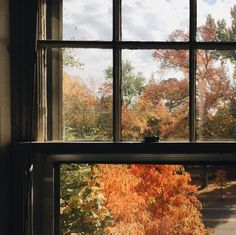 Breathe in the autumn air