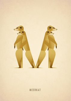 Animal Alphabet: M || Marcus Reed || http://www.marcusreed.com/