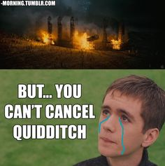 Photo of But you can't cancel quidditch! for fans of Harry Potter Vs. Harry Potter Puns, Harry Potter Universal, Harry Potter World, Golden Trio, Oliver Wood, Book Fandoms, Funny Memes, Humor, Books