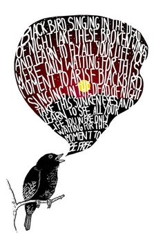 Blackbird | The best song of the Beatles, in my opinion. La … | Flickr
