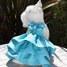Susan Lanci Madison Dress- 12 Colors