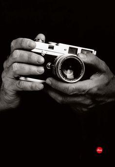 Dreamt 'twas my hands... - Leica MP