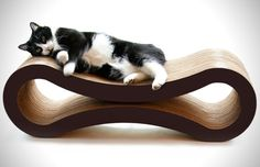 Product Guide 11 Modern Pet Beds For The Home (9)