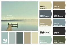 ColorSnap by Sherwin-Williams – JanetP