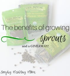 The benefits of growing sprouts (and a GIVEAWAY!) - Simply Healthy Home