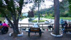 O que fazer em Campos??? Que tal um passeio de pedalinho!!!    Hospede-se no Hotel Estoril Estoril, O Hotel, Outdoor Decor, Plants, Home Decor, Pedal Boat, Fields, Sidewalk, Flora