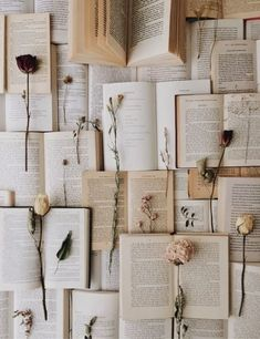 23 ideas for photography aesthetic vintage wallpaper Beige Aesthetic, Book Aesthetic, Flower Aesthetic, Aesthetic Vintage, Aesthetic Pictures, Aesthetic Collage, Photo Wall Collage, Picture Wall, Picture Of A Book