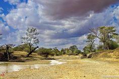 River bed in South Kordofan  قاع النهر في جنوب كردفان  (By Salahaldeen Nadir)   #sudan #kordofan #kurdufan